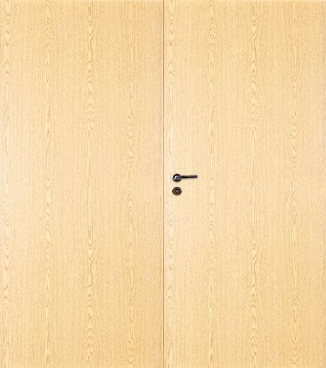 Дверь Терри Норма двупольная